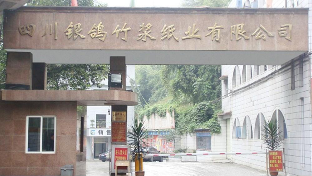 华东工控 | 四川银鸽竹浆纸业有限公司5万吨/年漂白竹浆改造工程案例